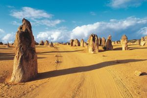 Pinnacles Desert Koalas and Sandboarding 4WD Day Tour from Perth - Tourism Cairns
