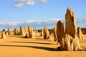 Pinnacles and Yanchep National Park Day Trip from Perth Including Lobster Shack Lunch and Sandboarding - Tourism Cairns