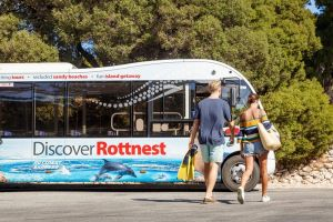 Rottnest Island Tour from Perth or Fremantle including Bus Tour - Tourism Cairns