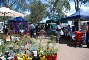 Fernvale Country Markets - Tourism Cairns
